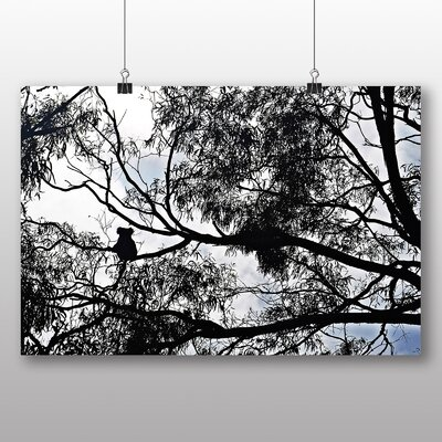 Big Box Art Koala Bear in The Trees Photographic Print on Canvas