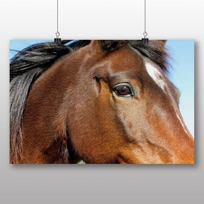 Big Box Art Horse Close Up Photographic Print Wrapped on Canvas