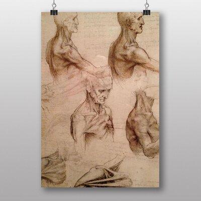 Big Box Art Leonardo Da Vinci Anatomy No.3 Art Print