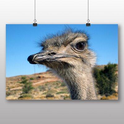 Big Box Art Ostrich No.2 Photographic Print on Canvas