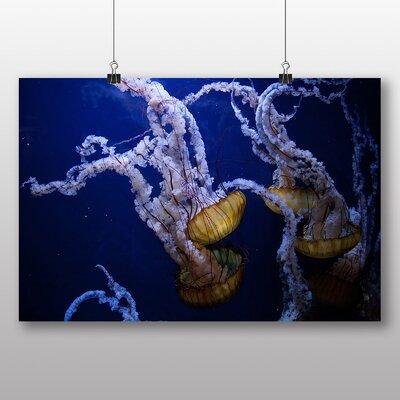 Big Box Art 'Jellyfish 8' Graphic Art