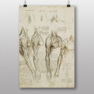 Big Box Art Anatomy No.9 by Leonardo Da Vinci Art Print