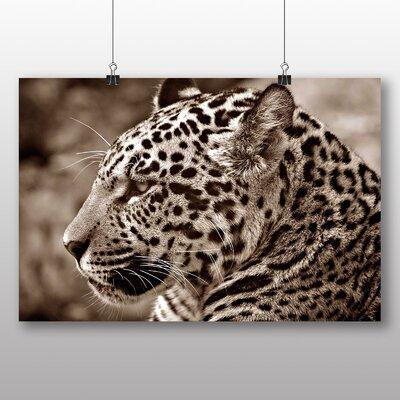Big Box Art Jaguar Photographic Print Wrapped on Canvas