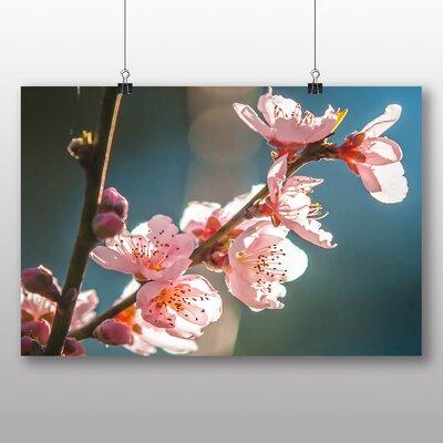 Big Box Art Peach Tree Blossom Pink Photographic Print