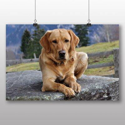 Big Box Art Labrador Dog Photographic Print on Canvas