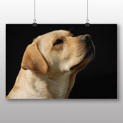 Big Box Art Labrador Dog No.2 Photographic Print