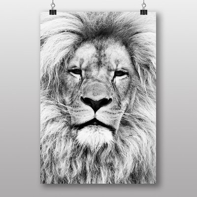 Big Box Art Lion No.3 Photographic Print