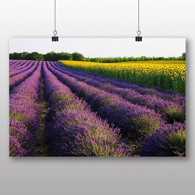 Big Box Art Lavender and Sunflower Flower Photographic Print Wrapped on Canvas