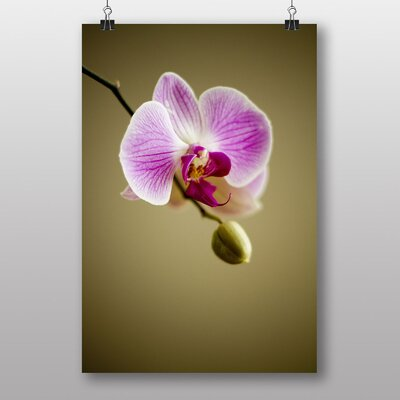 Big Box Art Pink Orchid Flower No.3 Photographic Print Wrapped on Canvas