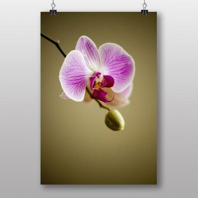 Big Box Art Pink Orchid Flower No.3 Photographic Print