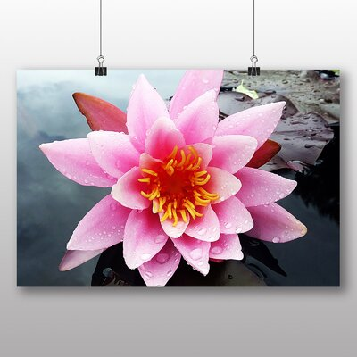 Big Box Art Pink Water Lily Flower No.5 Photographic Print Wrapped on Canvas
