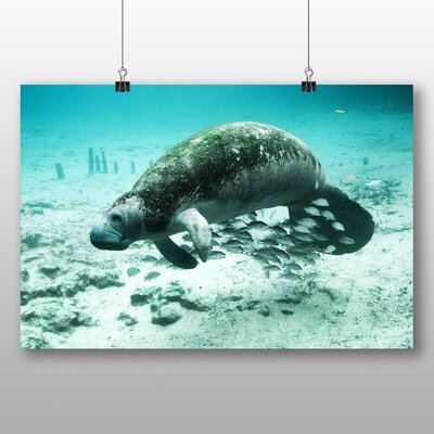 Big Box Art Manatee Photographic Print