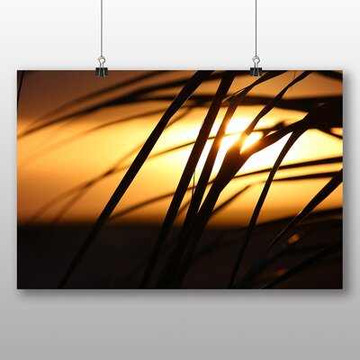 Big Box Art Palm Tree Tropical Beach Paradise No.4 Photographic Print Wrapped on Canvas