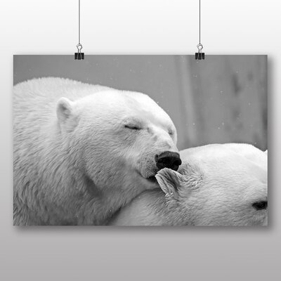 Big Box Art Polar Bear No.3 Photographic Print Wrapped on Canvas
