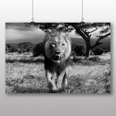 Big Box Art Lion No.7 Photographic Print Wrapped on Canvas