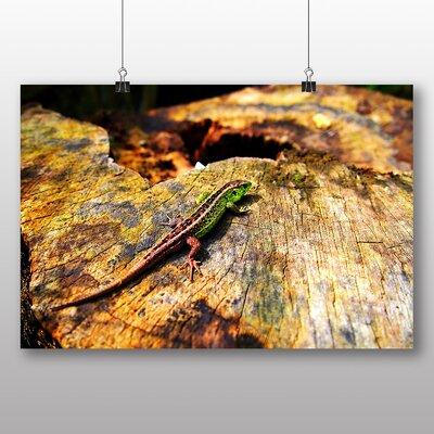 Big Box Art Lizard No.2 Photographic Print