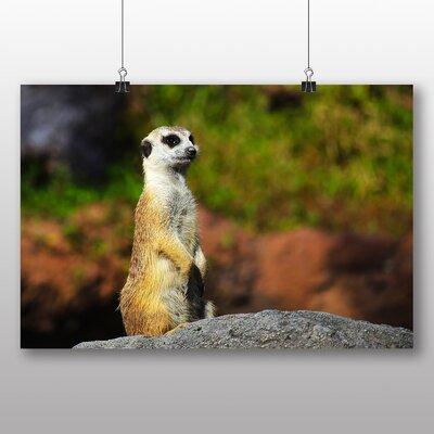 Big Box Art Meerkat No.4 Photographic Print on Canvas