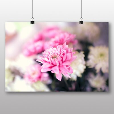 Big Box Art 'Pretty Flowers No.2' Photographic Print