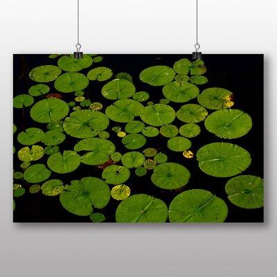 Big Box Art Lily Pad Pond No.2 Graphic Art on Canvas