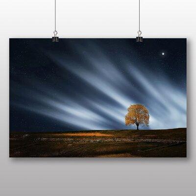 Big Box Art Lone Tree No.2 Photographic Print on Canvas