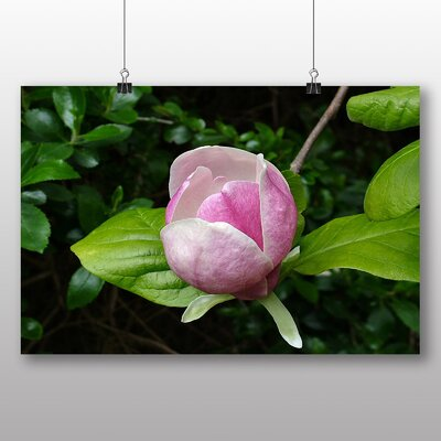 Big Box Art Lotus Flower No.1 Photographic Print Wrapped on Canvas