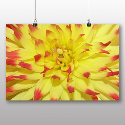 Big Box Art Red and Yellow Flower Photographic Print Wrapped on Canvas