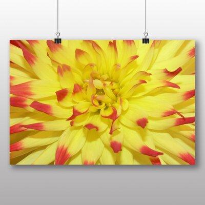 Big Box Art Flower Photographic Print