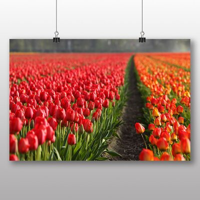 Big Box Art Red Tulip Field Flowers No.1 Photographic Print Wrapped on Canvas