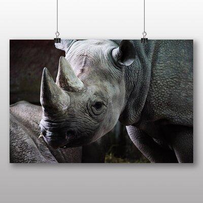 Big Box Art Rhino No.2 Photographic Print