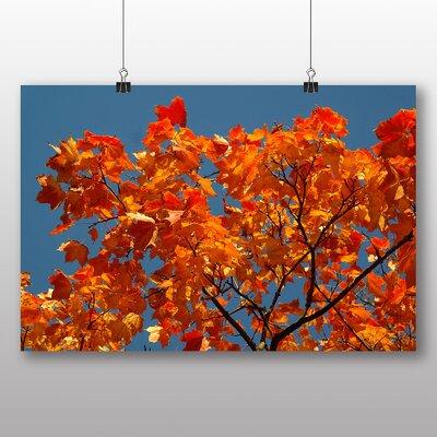 Big Box Art Maple Tree Leaves Autumn No.5 Photographic Print