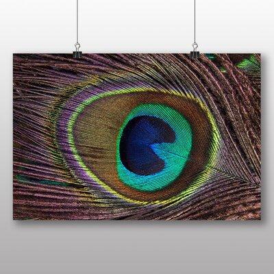 Big Box Art Peacock Feather Photographic Print