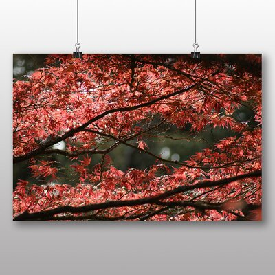 Big Box Art Maple Tree Leaf Autumn No.3 Photographic Print on Canvas