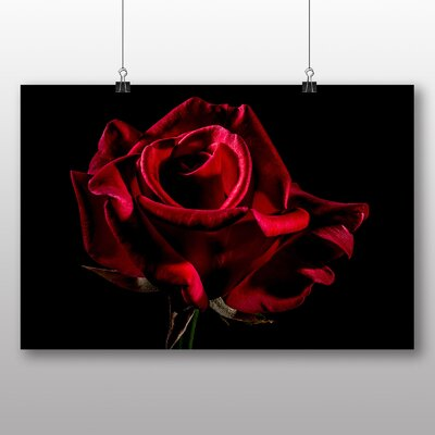 Big Box Art Red Rose Flower No.3 Photographic Print
