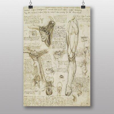 Big Box Art No.8 by Leonardo Da Vinci Anatomy Graphic Art