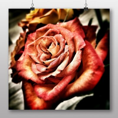 Big Box Art Pink Rose Flower No.4 Graphic Art Wrapped on Canvas