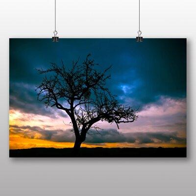 Big Box Art Lone Tree Sunset No.1 Photographic Print on Canvas