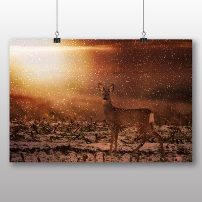 Big Box Art Roe Deer Photographic Print on Canvas