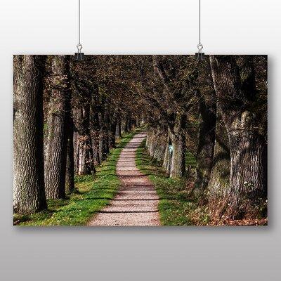 Big Box Art Oak Tree Path No.3 Photographic Print on Canvas