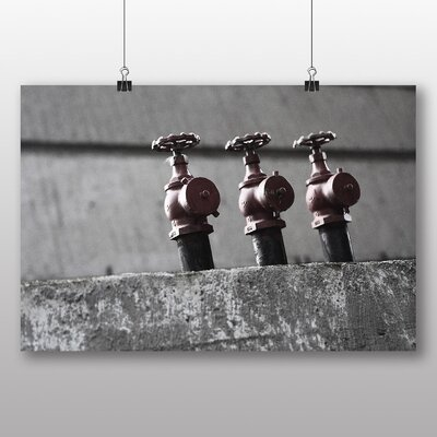 Big Box Art 'Three Fire Hydrant' Photographic Print