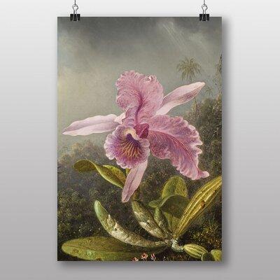 """Big Box Art """"Heade Pink Orchids"""" by Martin Johnson Heade Art Print"""