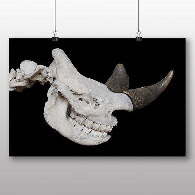 Big Box Art Rhino Skull Photographic Print