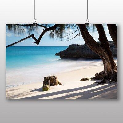 Big Box Art Palm Tree Tropical Beach No.2 Photographic Print