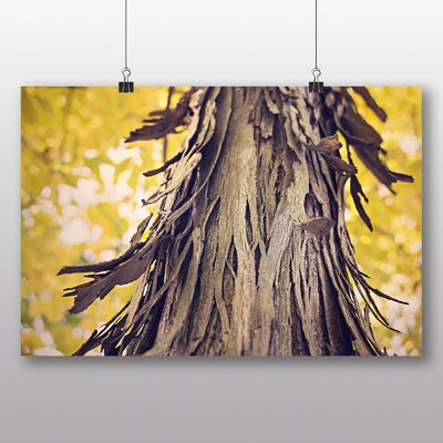 Big Box Art 'Tree Bark' Photographic Print