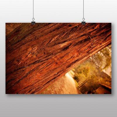Big Box Art 'Tree Bark No.2' Photographic Print