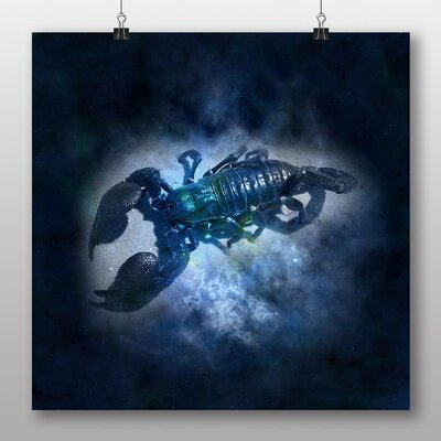 Big Box Art Scorpio Scorpion Astrology Zodiac Graphic Art on Canvas