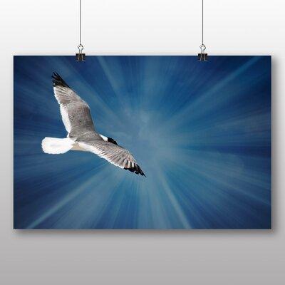 Big Box Art Seagull No.3 Graphic Art