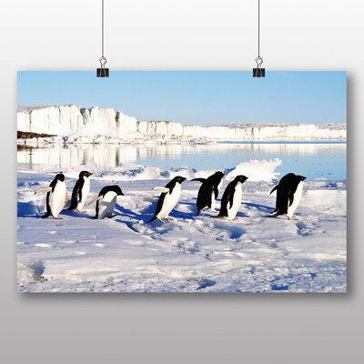 Big Box Art Penguins No.2 Photographic Print on Canvas