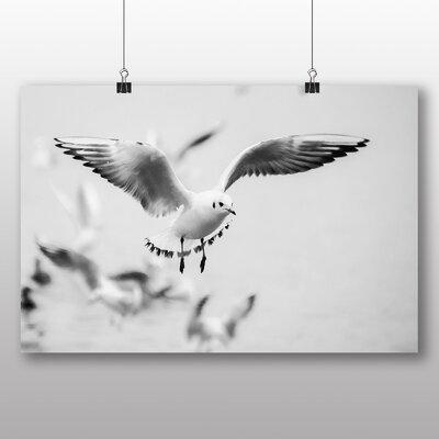 Big Box Art Seagulls Photographic Print Wrapped on Canvas