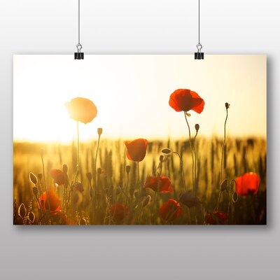Big Box Art Poppy Field Flower No.2 Photographic Print on Canvas