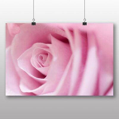 Big Box Art Pink Rose Photographic Print on Canvas